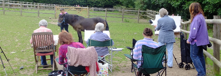 exmoor_pony_centre_group_visits