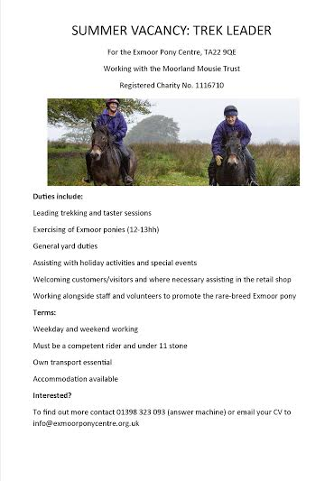 exmoor_pony_centre, riding_job_vacancy